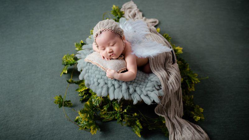 Newborn Baby, Baby girl, Angel, Green leaves, Sleeping baby, Portrait, Cute Baby, Photoshoot, 5K, Wallpaper
