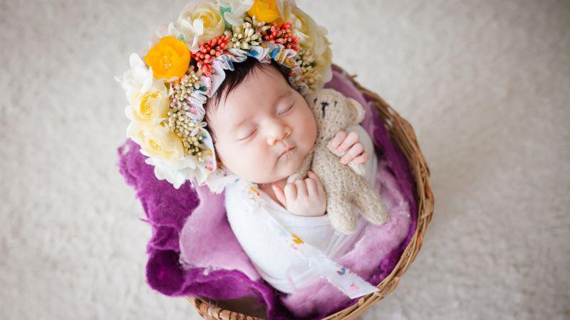 Newborn, Flower Wreath, Sleeping baby, White fur, Basket, Teddy bear, Cute Baby, 5K, Wallpaper
