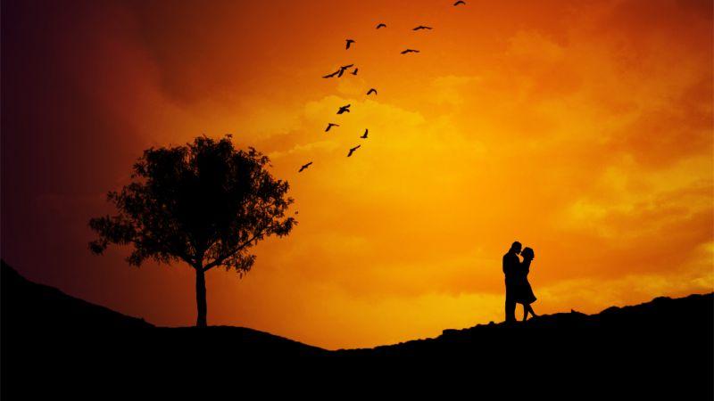Couple, Silhouette, Orange sky, Tree, Birds, Sunset, Romantic, Landscape, Wallpaper