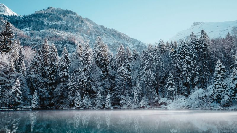 Snow mountains, Glacier, Frozen, Mist, Lake, Reflection, Snow covered, Trees, Winter forest, 5K, Wallpaper