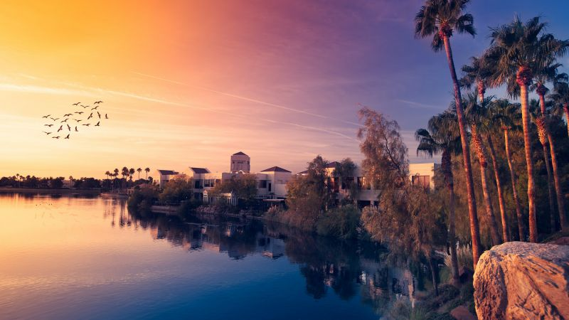 Sunset, Purple sky, Colorful Sky, Village, Palm trees, Flying birds, Reflection, Water, Wallpaper