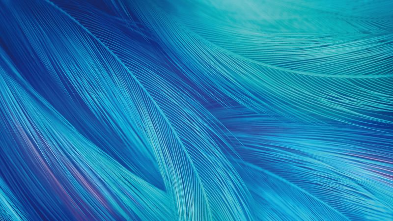 Feathers, CGI, Blue, Teal, Stock, Vivo X27, 5K, 8K, Wallpaper