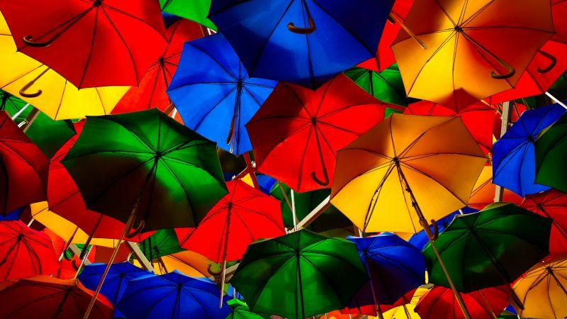 Umbrellas, Colorful, Multicolor, Artistique, Overhead, Pattern, Vibrant, 5K, 8K, Wallpaper