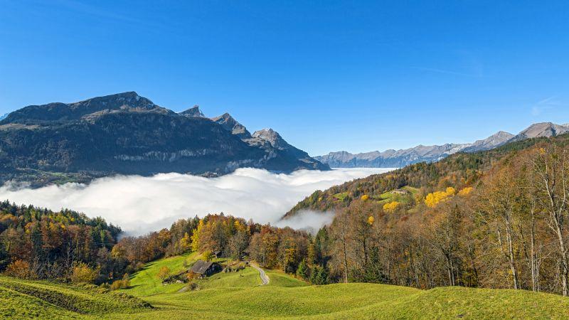 Green landscape, Mountain, Fog, Trees, Forest, House, Autumn, Grass, Blue Sky, Clear sky, Beautiful, Scenery, 5K, 8K, Wallpaper