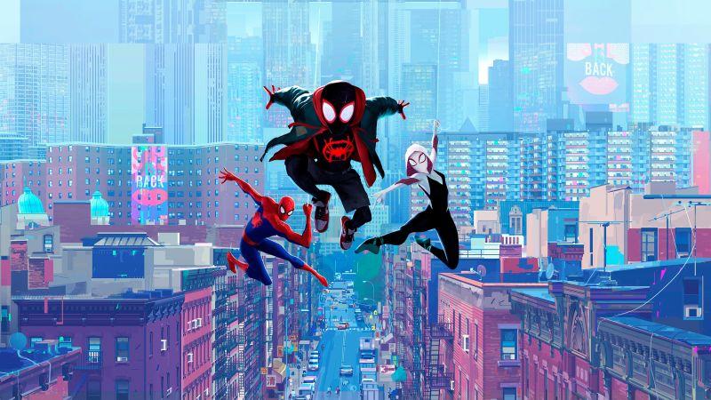 Spider-Man: Into the Spider-Verse, Miles Morales, Spider-Man, Spider-Gwen, Marvel Cinematic Universe, 5K, Wallpaper