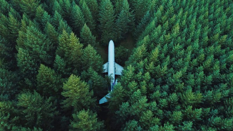 Airplane, Green Trees, Aerial view, Forest, Green background, Alpine trees, Wallpaper