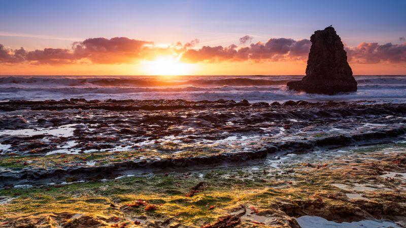 Davenport, California, USA, Sunset, Clouds, Marine Layers, Waves, Ocean, Seascape, 5K, 8K, Wallpaper