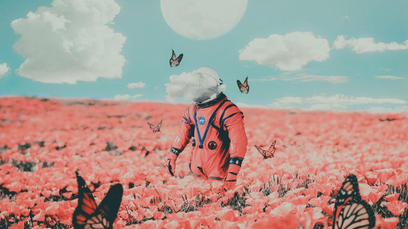 Astronaut, NASA, Flower garden, Butterflies, Surreal, Moon, Clouds, Space suit, 5K, Wallpaper