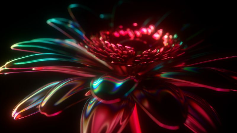 3D, Neon, Flower, CGI, Cyberpunk, Black background, Glowing, Wallpaper