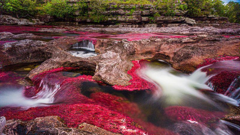 Caño Cristales, River, Serranía de la Macarena, Stream, Rocks, Colombia, 5K, Wallpaper