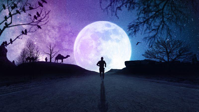 Full moon, Silhouette, Running, Starry sky, Night, Road, Wallpaper