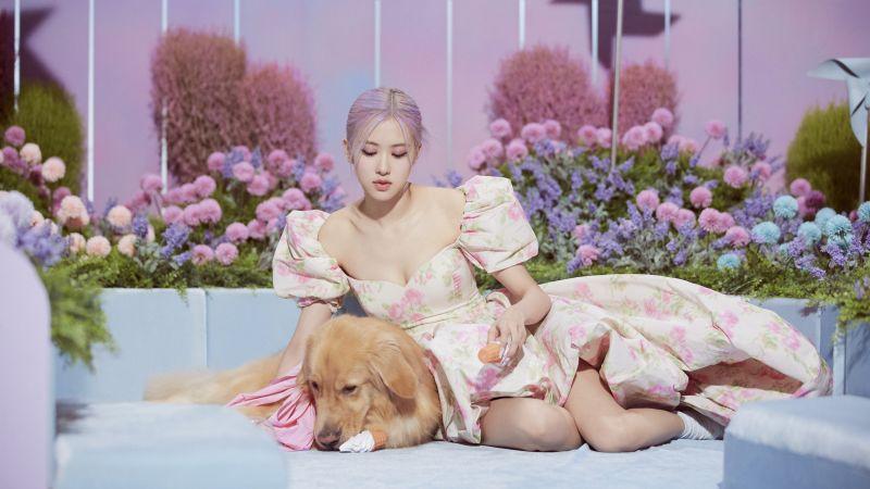 Rose, Blackpink, Korean singer, K-Pop singer, South Korean, Asian Girl, Wallpaper
