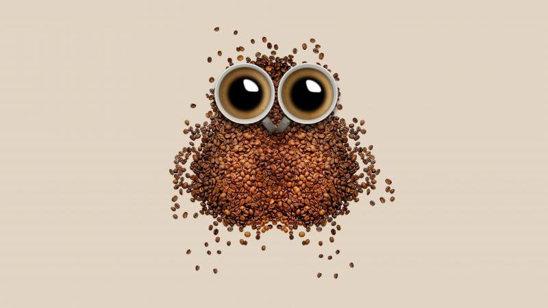 Coffee beans, Owl, Coffee cup, Brown, Drinks, Caffeine, Beautiful, 5K, 8K, Wallpaper