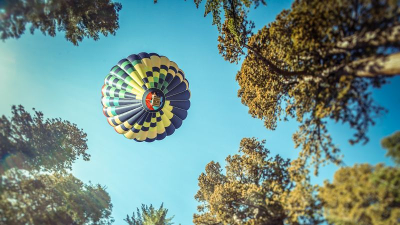Hot air balloon, Sequoia National Park, California, Woods, Tall Trees, Looking up at Sky, Blue Sky, 5K, Wallpaper