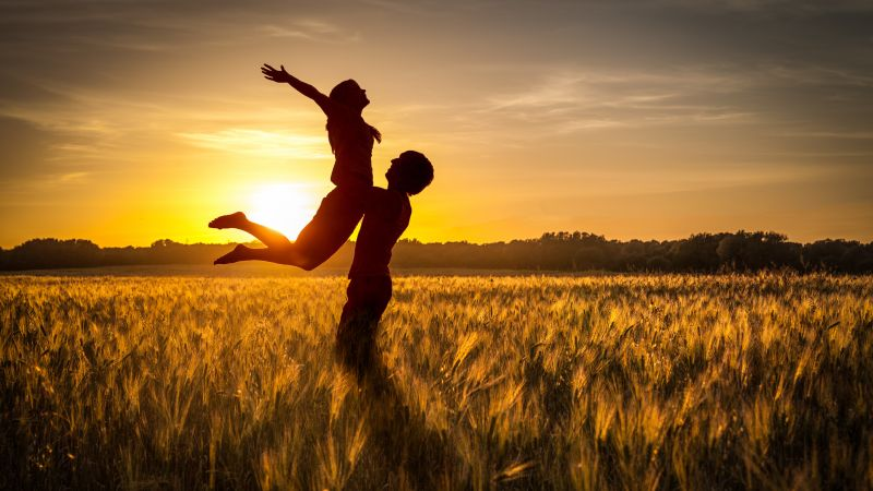 Couple, Silhouette, Sunset, Romantic, Together, Evening, Clear sky, Field, Lifting, 5K, Wallpaper