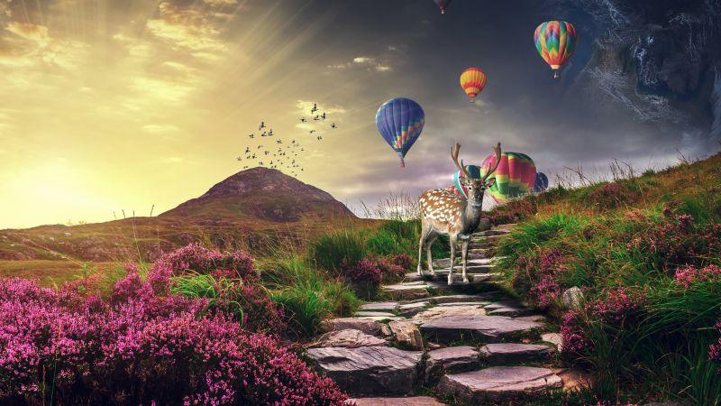 Deer, Hot air balloons, Sunrise, Landscape, Stone staircase, Spring, Girly, Wallpaper
