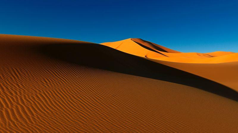 Sahara Desert, Sand Dunes, Algeria, Soil, Daytime, Blue Sky, Clear sky, Scenery, Landscape, Wallpaper