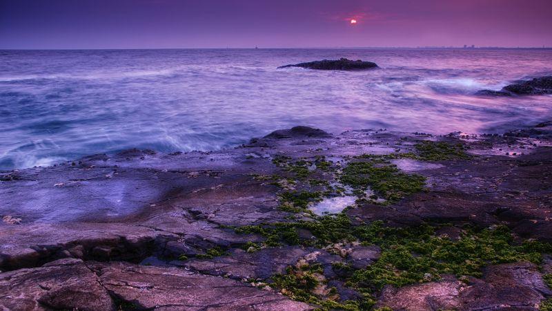 Seascape, Coast, Sunset, Ocean, Evening sky, Purple, Moss, Landscape, Wallpaper