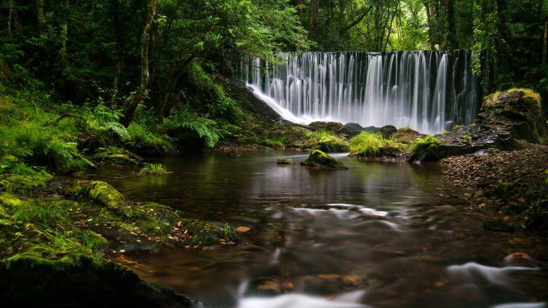 Mazo De Meredo, Waterfalls, Spain, Long exposure, Water Stream, Forest Trees, Greenery, Landscape, Moss, Wallpaper
