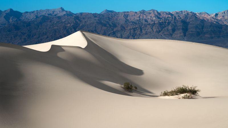 Mesquite Flat Sand Dunes, Death Valley National Park, Mountain range, Blue Sky, California, Desert, Landscape, Tourist attraction, Wallpaper