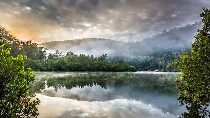 Berowra Creek, Australia, Cloudy Sky, Sunrise, Watercourse, Green Trees, Forest, Misty, Reflection, Landscape, Mirror Lake, 5K, Wallpaper