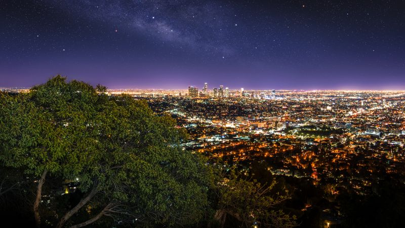 Los Angeles City, Cityscape, City lights, Night time, Horizon, Starry sky, Green Tree, Purple sky, Skyscrapers, Wallpaper