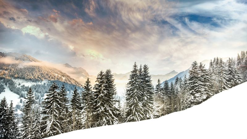 Mount Eggli, Swiss Alps, Mountain range, Snow covered, Winter, Snowy Trees, Alpine trees, Foggy, Cloudy Sky, Landscape, Scenery, Wallpaper