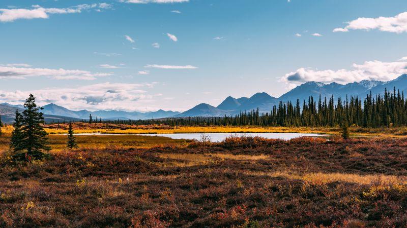 Autumn season, Landscape, Scenery, Beautiful, Mountain range, Green Trees, Clear sky, Lake, 5K, Wallpaper