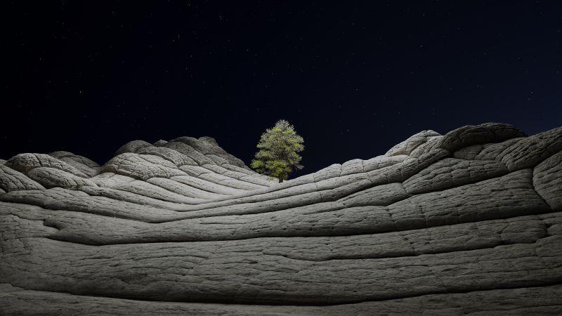 macOS Big Sur, Stock, Night, Lone tree, Sedimentary rocks, Starry sky, Dark, iOS 14, 5K, Wallpaper