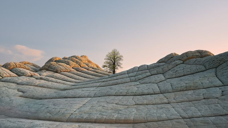 macOS Big Sur, Stock, Daytime, Lone tree, Sedimentary rocks, Daylight, iOS 14, 5K, Wallpaper