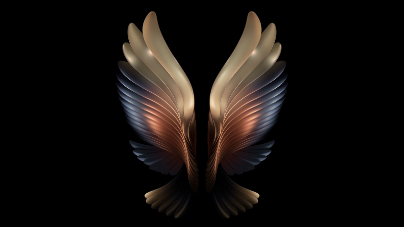 Samsung Galaxy W21, Samsung Galaxy Fold, AMOLED, Angel wings, Black background, Stock, Wallpaper