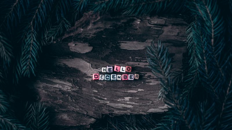 Hello December, Dice, Assorted, Wooden background, Pine branches, Christmas decoration, Letters, 5K, Wallpaper