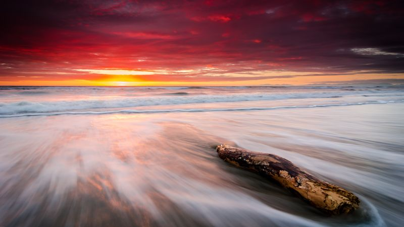 Leithfield Beach, New Zealand, Sunrise, Orange sky, Seascape, Waves, Coastal, Cloudy Sky, Long exposure, Stump, 5K, Wallpaper