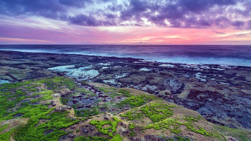 Rocky coast, Seascape, Green Moss, Sunset, Purple sky, Horizon, Ocean, Cloudy, Landscape, Wallpaper