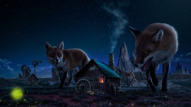 Witch House, Fox, Wild animals, Starry sky, Twilight, Night time, Digital composition, Fairy tale, 5K, Wallpaper