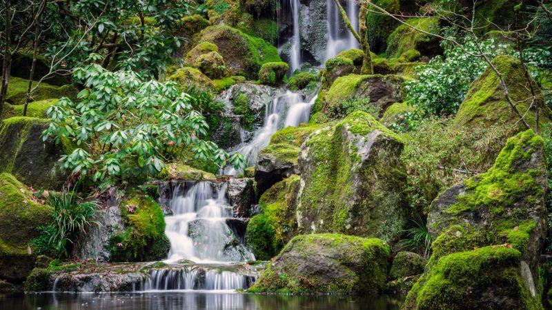 Portland Japanese Gardens, Waterfalls, Green Moss, Rocks, Greenery, Water Stream, Long exposure, 5K, Wallpaper