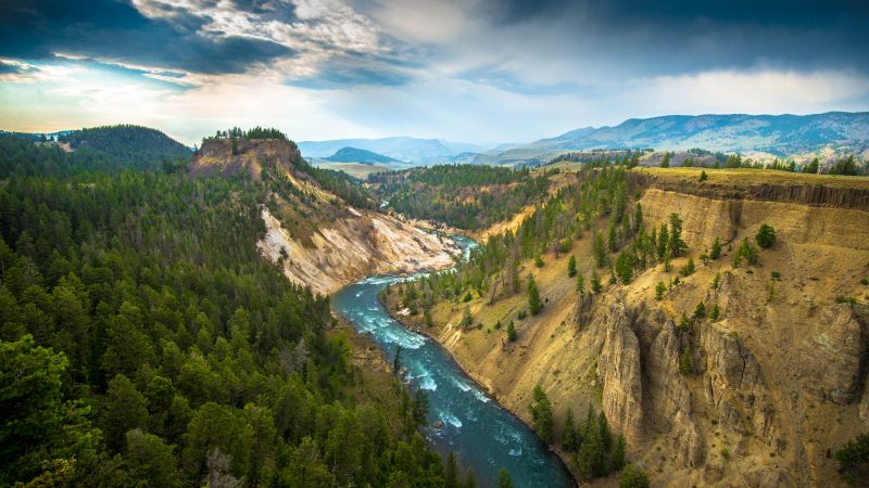 Yellowstone National Park, USA, Cliff, River Stream, Landscape, Canyon, Green Trees, Valley, Scenery, 5K, Wallpaper