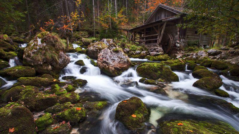 Gollinger Mill, Austria, Waterfalls, Rocks, Long exposure, Green Moss, Forest, Tall Trees, Woods, Landscape, Scenery, Flowing Water, Wallpaper
