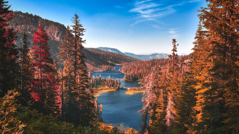 Yosemite National Park, River, Forest, Autumn, Scenery, Landscape, Trees, Valley, Wallpaper