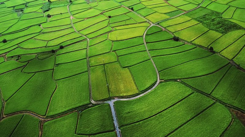 Agriculture, Farm Land, Countryside, Aerial view, Green, Landscape, OS X Mountain Lion, Stock, Wallpaper