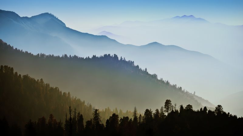 Mac OS X, Mountains, Forest, Hills, Foggy, Morning, Stock, 5K, Wallpaper