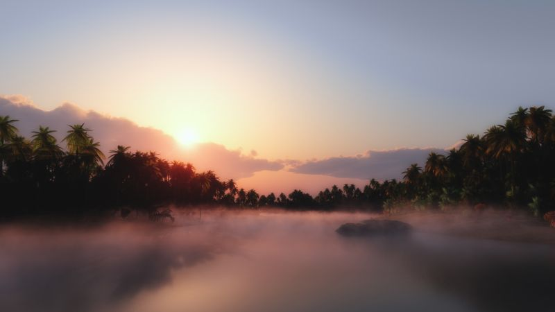 Sunrise, Palm trees, Mist, Foggy, Tropical, Body of Water, Landscape, Clouds, Scenery, Wallpaper