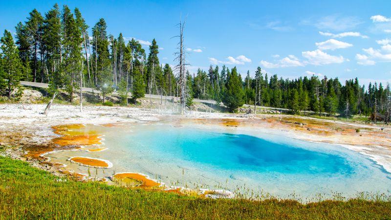 Mudpot, Yellowstone National Park, Tourist attraction, Green Trees, Landscape, Blue Sky, Wallpaper