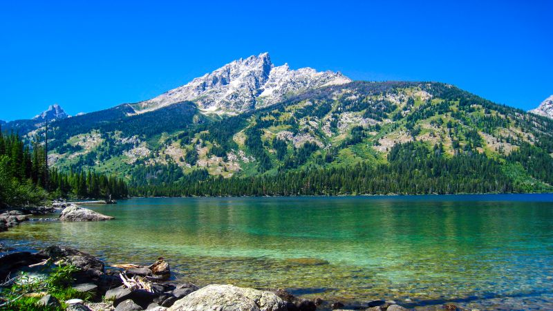 Emerald Lake, Grand Teton National Park, Wyoming, Blue Sky, Clear water, Rocks, Landscape, Scenery, Green Trees, Day time, Wallpaper