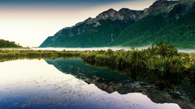 Mirror Lakes, New Zealand, Fog, Mountain, Reflection, Landscape, Scenery, Greenery, Wallpaper