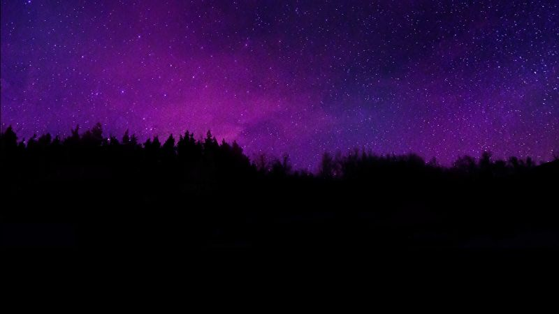 Trees, Silhouette, Purple sky, Dark background, Night sky, Stars, Wallpaper