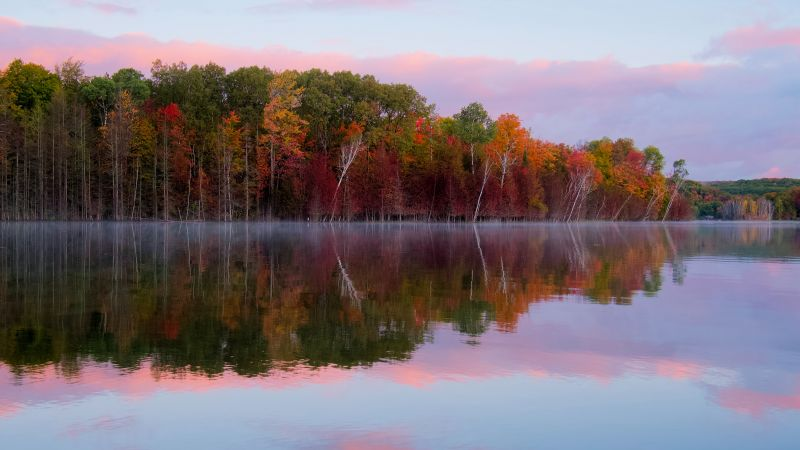 Autumn trees, Forest, Body of Water, Reflection, Lake, Landscape, Scenery, Outdoor, 5K, Wallpaper