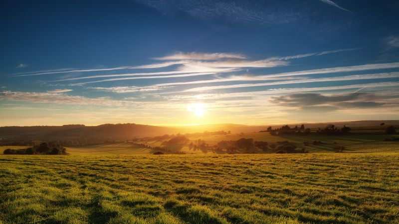 Green Meadow, Grass field, Landscape, Sunset, South Downs National Park, United Kingdom, Findon, Wallpaper