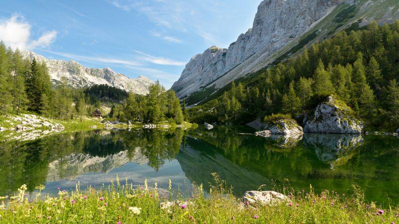 Double Triglav lake, Slovenia, Seven lakes valley, Julian Alps, Mountains, Landscape, Reflection, Green Trees, Blue Sky, Clear sky, Wallpaper