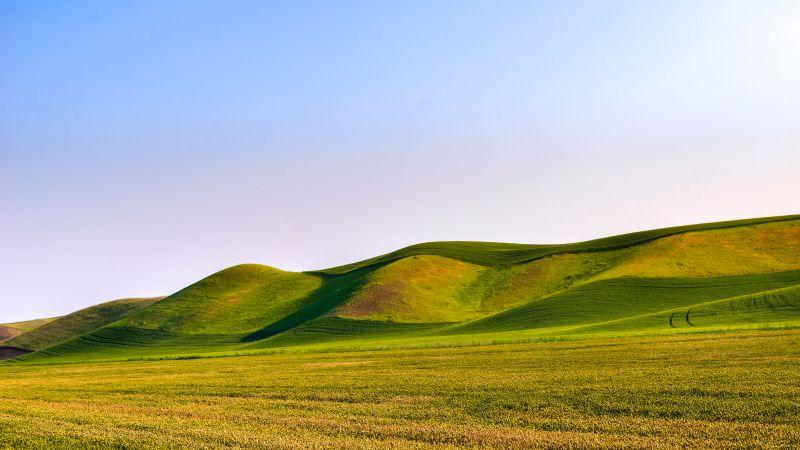 Great Field Dunes, Green Meadow, Landscape, Scenery, Beautiful, Clear sky, Wallpaper